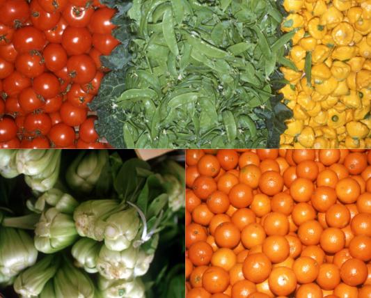 左上からミニトマト、さやえんどう、黄色の野菜、青梗菜、オレンジの画像
