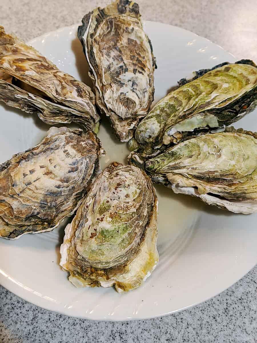 蒸しあがった牡蠣6個の画像