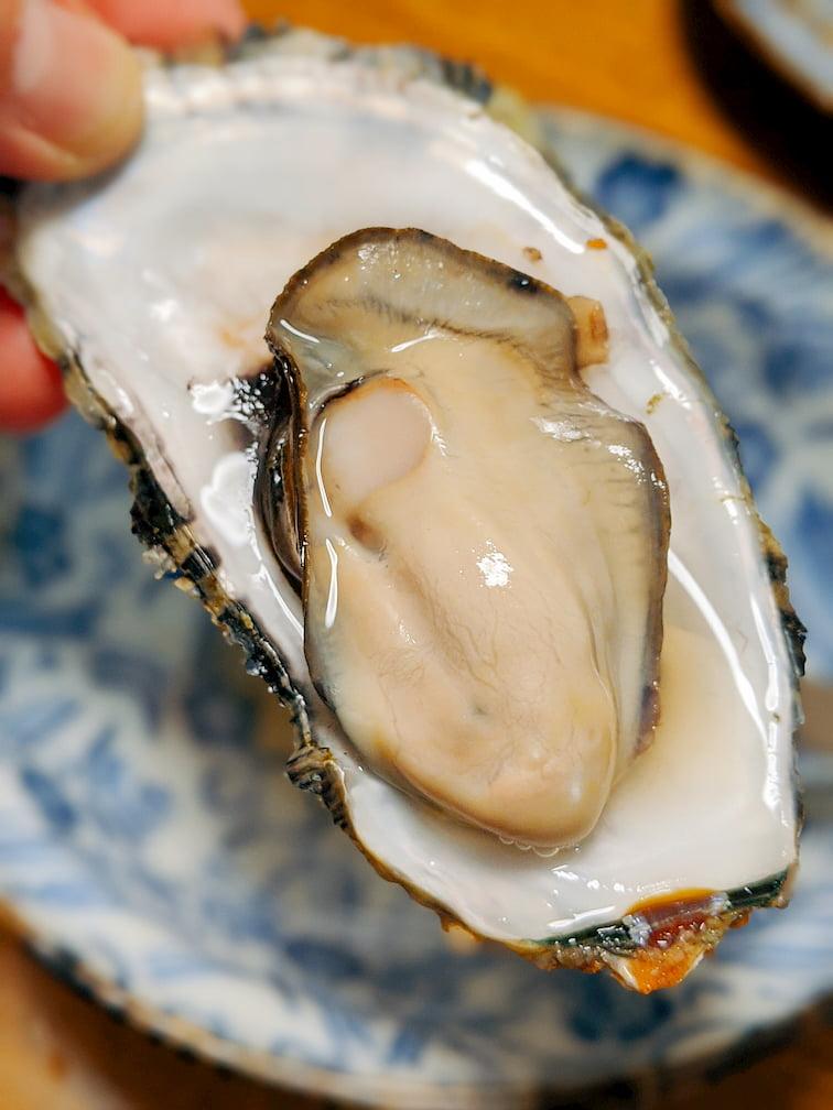 殻に乗った牡蠣1つの画像